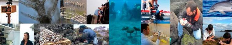 Island Biodiversity, Biogeography & Conservation - IBBC