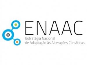 Investigadores cE3c entre os membros do recém-nomeado Painel Científico da ENAAC 2020