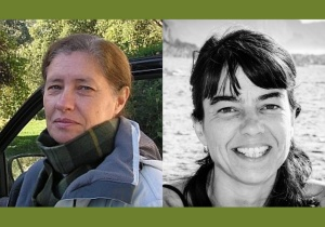 Opinião de membros do cE3c sobre as medidas para o emprego científico, no jornal Público