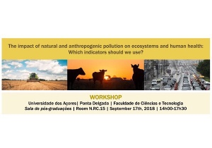 "Workshop ""The impact of natural and anthropogenic pollution on ecosystems and human health: which indicators should we use?"" 