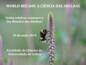 World Bee Day: A Ciência das Abelhas | 20 de maio, FCUL