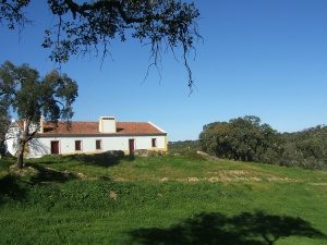 Estratégias e medidas de adaptação e sustentabilidade do Montado a 8 de maio em Grândola, na Herdade da Ribeira Abaixo