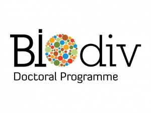 Twelve scholarships available for the BIODIV Doctoral Programme – Applications open between 25th May and 25th June