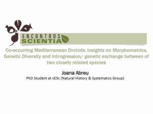 Encontro Scientia | Joana Abreu | 15th June 2016