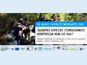 Bioblitz Monsanto 2016 | 2 de julho 2016