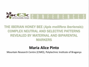 cE3c conference | Maria Alice Pinto | February 1st, 2017