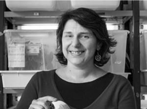 """Sara Magalhães distinguida na galeria """"Mulheres na Ciência"""" da Ciência Viva"""