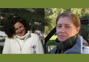 Cristina Máguas é a nova coordenadora do Centro de Ecologia, Evolução e Alterações Ambientais
