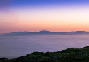 Novo estudo demonstra que a atual biodiversidade insular só pode ser explicada considerando o seu passado distante