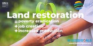 Restaurar os ecossistemas para alcançar os objetivos de desenvolvimento sustentável