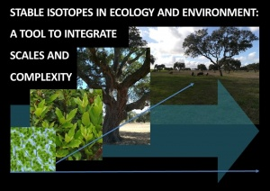 "Curso Avançado cE3c ""Stable isotopes in Ecology and Environment: a tool to integrate scales and complexity"": data-limite de candidaturas prolongada até 14 outubro 2019"