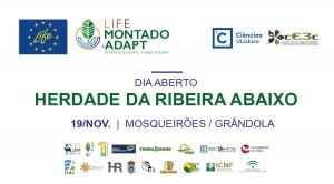 Dia Aberto do projeto LIFE-Montado Adapt | 19 novembro, Herdade da Ribeira Abaixo (Grândola)
