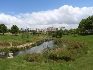 cE3c dinamiza inquérito sobre os espaços verdes de Almada