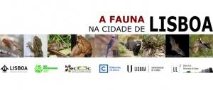 Ajude a identificar a fauna da cidade de Lisboa