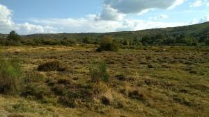 Pelo menos 14% dos locais da rede Natura 2000 da Península Ibérica Ocidental estão em risco de eutrofização