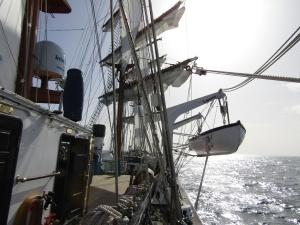 Ciência-cidadã a bordo do Navio Escola Sagres
