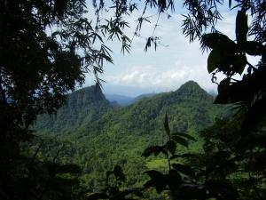 Biodiversidade das ilhas é melhor conservada em paisagens inacessíveis