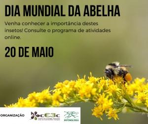 Dia Mundial da Abelha: 20 de maio de 2020
