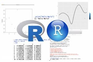 Cursos Avançados cE3c 'Introduction to R' e 'Advanced R': realização à distância em junho 2020