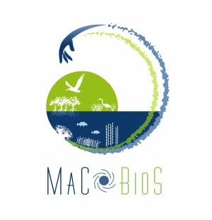 Projeto europeu H2020 MaCoBioS com coordenação científica nacional de cientista do cE3c