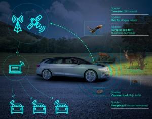Carros como ferramenta para monitorizar e proteger a biodiversidade