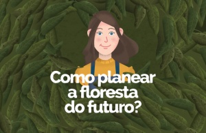 Como planear a floresta do futuro?