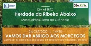 Dia Aberto – Herdade da Ribeira Abaixo – 24 outubro 2020, 14h30