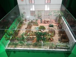 Hortas de Lisboa: colaboração de cE3c e HortaFCUL em nova exposição no Museu de Lisboa