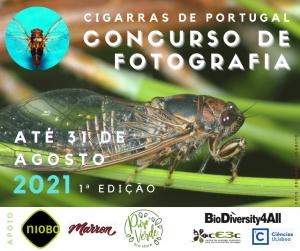 Primeira edição do Concurso de Fotografia 'Cigarras de Portugal'